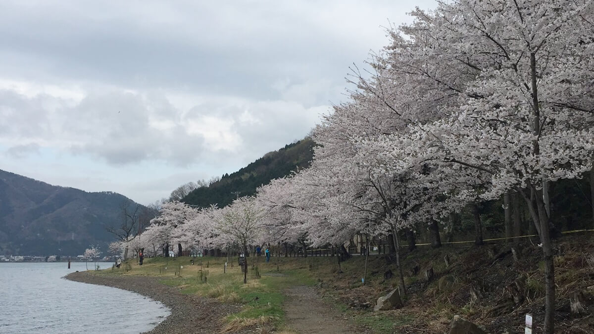 滋賀県 海図大崎